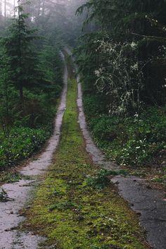 millivedder: Abandoned Road Prints