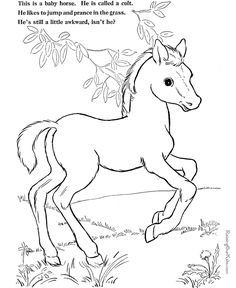 Coloring pages. Printable. Horses