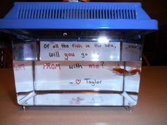 Promposal: Of all the fish in the sea, will you go to prom with me?