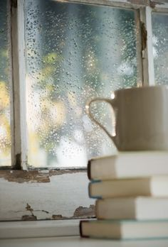 Afternoon rain photography rain books window
