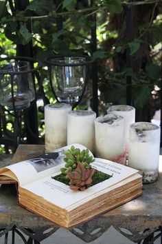 DIY book planter #DIY