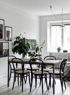 T.D.C: thonet chairs, art + foliage