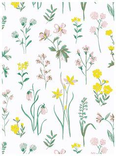 Wild-flower-pink-grn-yellow-by-BellaGomez.jpg