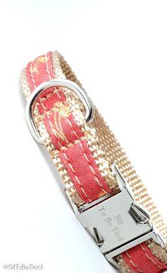 Pretty coral dog collar. Small dog collar for girls