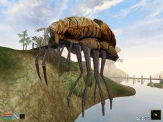 Morrowind. Zancador de cienagas. Es un insecto gigantesco que se usa como transporte de personas y mercancías entre las diversas ciudades.