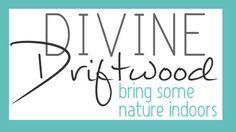 Divine Driftwood