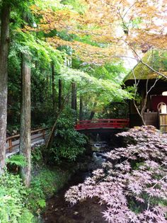 Restaurant in the forest, Ukai Toriyama / Japan (by gavsherry).