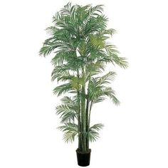 7 Ft Areca Silk Palm Tree