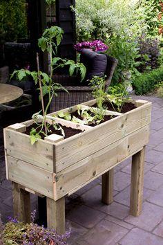 Zelf je groenten of kruiden kweken in een zelfgemaakte moestuinbak | Woonguide.nl