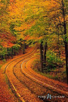 What a neat road. It looks like a beautiful drive