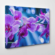 Canvasprints.io | Violet & Purple Orchids - #canvasprintsio - Low cost, high quality canvas prints made in London UK from just £13.99. You're sure to find inspiration in our collection. Ask about our photo to canvas option too, it's super simple. Canvas prints on wall / flower and floral canvas art