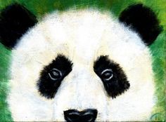 Peeking Panda Acrylic Painting Workshop - Painting Soiree: Denver Painting Workshops (Denver, CO) - Meetup Acrylic Painting For Beginners, Acrylic Painting Lessons, Painting For Kids, Acrylic Paintings, Panda Painting, Painting & Drawing, Angel Artwork, Wine And Canvas, Painting Workshop