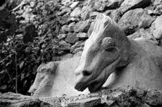 Horse head sculpture by Leonora Carrington, St. Martin D'Ardeche, 1939, photo by Lee Miller