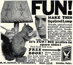 """""""FUN! Make this squirrel lamp. Yes sir, out of a real squirrel!"""""""
