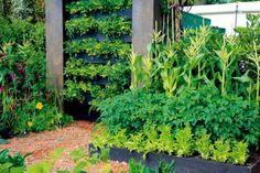 Rašelinová stena - riešenie do bytu aj malej záhrady   Urob si sám