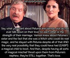 Say what you want about Petunia and Vernon but do not ever talk...
