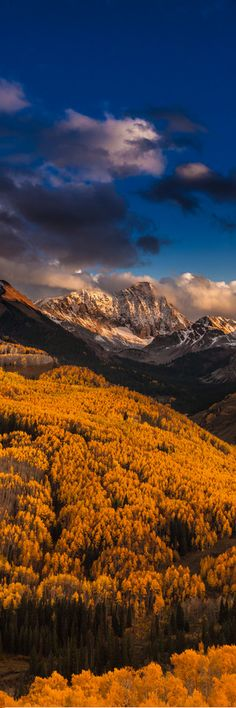 Fall in Colorado - tmophoto