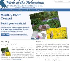 Two kinds of enjoyments for EJC Arboretum visitors: birding, and photography. Over 115 species confirmed sightings. Check us out at:http://www.jmu.edu/arboretum/apps/birds/index.php