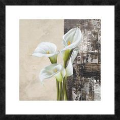 "Global Gallery 'Nature II' by Jenny Thomlinson Framed Graphic Art Size: 26"" H x 26"" W x 1.5"" D"