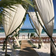 Tulum style wedding elegance! #tulumweddings #weddingvibes #beachwedding #bodatulum #akiinwedding #weddinggoals #akiinbride #akiingroom #akiinbeach #akiintulum #akiinbeachtulum #rivieramayawedding #destinationwedding #tulumstyle #tulumbeachclub #weddingvibes #caribbeanwedding #tulumweddingvenue #beachweddingideas #weddingdetails#loveinparadise #tulumvibes #akiinvibes #tulumweddingstyle #tulumweddingplanner #bodastulum #weddingspecialists #tulumbeach #visitmexico #weddingday #tulummexico...