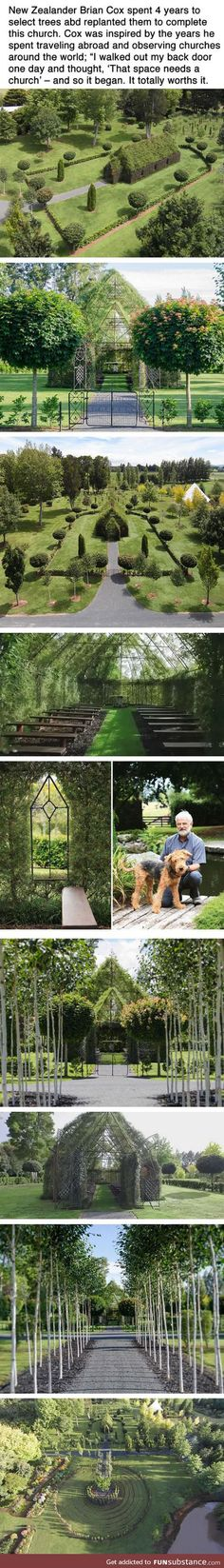 This Man Spent Four Years Using Trees To Grow A Church