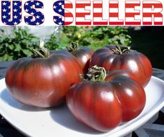 30 Organically Grown Brandywine Black Tomato Seeds Heirloom Non GMO Beefsteak | eBay