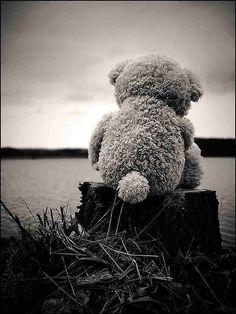 Bear at the lake...