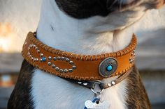 Mohave Saddle Tan Leather Dog Collar with Infinity Rivet Design Silver Concho and Tan Lacing Bohemian Southwest Boho Leather Dog Collar on Etsy, $55.00