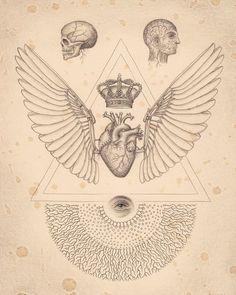 "Daniel Martin Diaz's ""Soul of Science"" monograph"