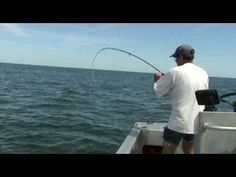 Conseil pêche a la ligne  sur pêche mania vous trouverez tout sur la pêche en étang lac ou riviére ainsi que la pêche en mer, vous trouverez aussi des technique ou conseils de péche de toute sortes pour les débutants  Read more at http://peche-mania.e-monsite.com/#wz2uUFVCi3dfBMjK.99