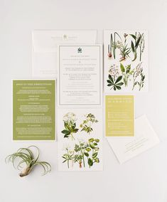 garden wedding invitation with botanical illustrations in green color palette