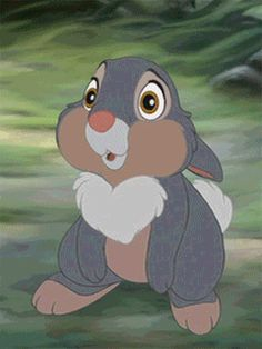 The perfect Thumper Blinking Animated GIF for your conversation. Discover and Share the best GIFs on Tenor. Bambi Disney, Disney Pixar, Disney Amor, Cute Disney, Walt Disney, Disney Films, Disney Cartoons, Disney Magic, Disney Animation