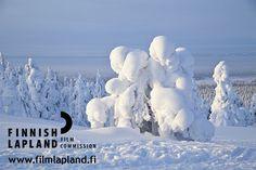 Winter in Pyhä and Luosto fell region, Finnish Lapland. #filmlapland #finlandlapland #arcticshooting