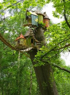 How To Build A Treehouse ? This Tree House Design Ideas For Adult and Kids, Simple and easy. can also be used as a place (to live in), Amazing Tiny treehouse kids, Architecture Modern Luxury treehouse interior cozy Backyard Small treehouse masters Cool Tree Houses, Fairy Houses, Play Houses, House Trees, Doll Houses, Magical Tree, Outdoor Living, Outdoor Decor, In The Tree