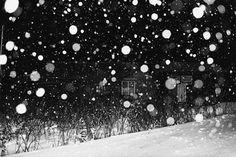 Daido Moriyama, A snowy night in Hokkaido