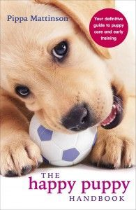 A collection of twenty-two helpful and easy to follow dog training tips brought to you by best-selling author Pippa Mattinson.