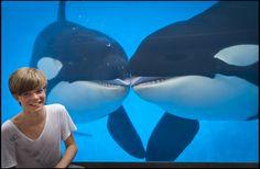 British pop sensation Ronan Parke meets some of his biggest fans at SeaWorld Orlando.