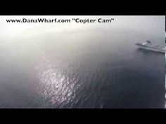 """Dana Point Whale Watching presents the Gray Whale exclusively from the """"Copter Cam"""""""