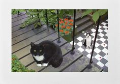Tuxedo Cat Art Print. Deborah Julian borrows this beautiful cat from a museum in Amsterdam. He wants his dinner. NOW! Click here to get 10% off this print and more at Deborah Julian Art by using Pinterest Exclusive Discount Code PIN10.