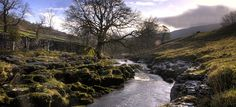 Tour the Yorkshire Dales with Herriot's Trails and Tours