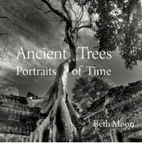 Captivating black-and-white photographs of the world's most majestic ancient trees. Beth Moon's fourteen-year quest to photograph ancient trees has taken her across the United States, Europe, Asia, the Middle East, and Africa. Some of her subjects grow in isolation, on remote mountainsides, private estates, or nature preserves; others maintain a proud, though often precarious, existence in the midst of civilization. All, however, share a mysterious beauty perfected by age and the power to…