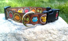 Fall Woodland Creatures 1 Inch Width Dog Collar by WillyWoofs, $17.00
