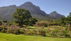 Spring Art Exhibition at Kirstenbosch Botanical Gardens National Botanical Gardens, Art Society, Spring Art, Local Artists, Walkway, Cape Town, Garden Art, Canopy, Galleries