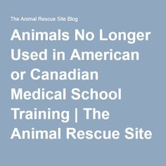 Animals No Longer Used in American or Canadian Medical School Training   The Animal Rescue Site Blog