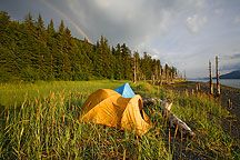 PWS Camping Photos, Chugach National Forest