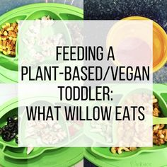 Feeding a Plant-Based Toddler: What Willow Eats Easy Healthy Recipes, Baby Food Recipes, Whole Food Recipes, Vegan Recipes, Kid Recipes, Cookie Recipes, Toddler Smoothies, Toddler Lunches, Toddler Food