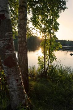 Finland and the U. of Michigan look one in the same. No wonder so many immigrants came to the U. , Northern Wis, and Minnesot Summer sun Beautiful World, Beautiful Places, Beautiful Pictures, Country Life, Mother Nature, Sweden, Serenity, Scenery, Images