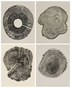 Connecticut-based artist Bryan Nash Gill has created a series of large scale prints from cross sections of trees. Gill reveals the sublime power locked inside their arboreal rings, patterns not only of great beauty, but also a year-by-year record of the life and times of the fallen or damaged logs. http://www.fabulousdesigncompany.co.uk/woodcuts/
