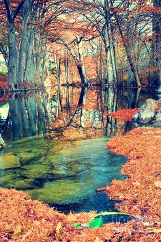 Lolipop River Photograph by Katya Horner - Lolipop River Fine Art Prints and Posters for Sale