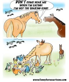 The horses won't share with each other but ignore the freeloading birds...